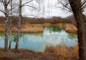 Naturschutzgebiet, Blick auf einen See