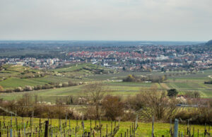 Blick nach Bad Dürkheim, im Vordergrund Weinberge, im Hintergrund Hügel und die Stadt